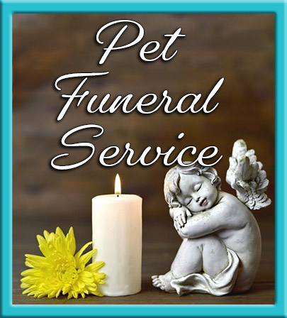 Celebrant-products-pet-funeral